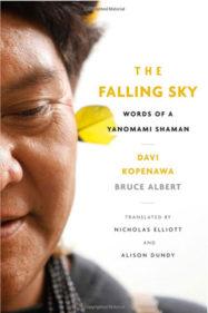 THE FALLING SKY by D. Kopenawa & B. Albert (2013)