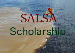 SALSA Scholarship-new2