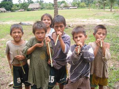 Teaching Lowland South America - News and Resources