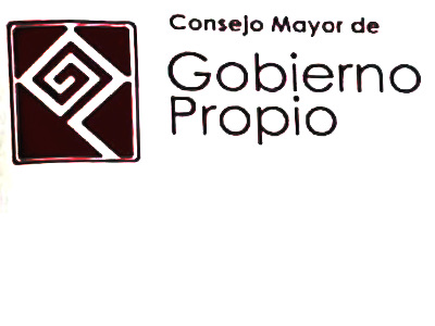 Letter by Gobierno Propio from Vaupés – COVID 19 (3-21-20)